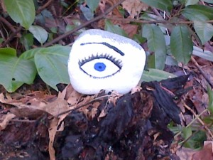 Rock with eye painted on